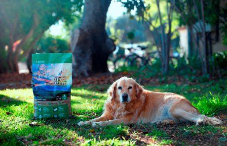 חברת צמח ישראפט משיקה מזון חדש לכלבים הרגישים למזון הרגיל