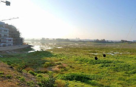 """אגמים: למרות ההבטחות, שלולית החורף לא תהפוך לאגם אטקרטיבי. העירייה תקים אגם חדש בפרוייקט של 100 מיליון ש""""ח"""